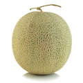 Cantaloupe melon isolated on white background Stock Images