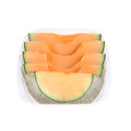 Cantaloupe melon slice isolated on white background Royalty Free Stock Photography