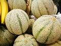 Cantaloupe melone Royalty Free Stock Photo