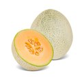 Canteloupe photo of melon with slice on white Stock Image
