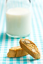 Cantuccini cookies and milk on checkered tablecloth Royalty Free Stock Photography