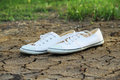 Canvas shoes white on land background Stock Image