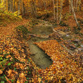Canyon in autumn time Royalty Free Stock Photo