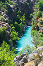 Canyon and river Royalty Free Stock Images