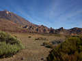 Canyon tenerife on the island of in the vicinity of the volcano teide Royalty Free Stock Photography