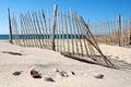Cape Cod Beach Stock Photo