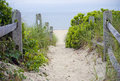 Cape Cod Beach Pathway Royalty Free Stock Photography