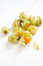 Cape Gooseberry Stock Image