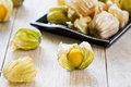 Cape gooseberry is indigenous to south america also known as inca berry aztec berry Royalty Free Stock Images