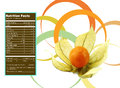 Cape gooseberry nutrition facts creative design for physalis with label Royalty Free Stock Photography