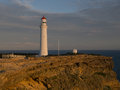 Cape nelson lighthouse at sunset great south west walk portland victoria australia Royalty Free Stock Photo