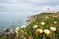 Cape roca portugal landscape with flowers the westernmost point of europe vertical Royalty Free Stock Photos