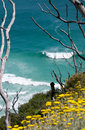 Cape Town Springtime Surf Royalty Free Stock Photography