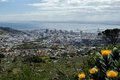 Cape town view over from the foot of the table mountain Royalty Free Stock Photo