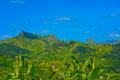 Cape Verde Volcanic Landscape, Corn Plant, Green Fertile Mountains Slopes