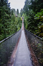 Capilano suspension bridge the famous in a raining day Royalty Free Stock Photos