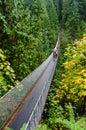 Capilano Suspension Bridge Royalty Free Stock Photo