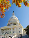 The Capitol Washington D.C. in the Fall Royalty Free Stock Photo