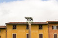 Capitoline wolf in pisa the italy romulus and rhemus sucking from the s teat as the founders of rome Royalty Free Stock Images