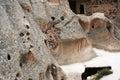 Cappadocia cave details of cappadocian caves ancient region turkey Royalty Free Stock Image