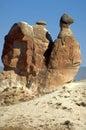 Cappadocia chimneys Stock Image