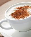 Cappuccino or latte coffee Royalty Free Stock Photo