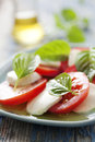Caprese salad closeup of classic italian with mozzarella basil and tomato Royalty Free Stock Photography