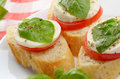 Caprese sandwiches with mozzarella of tomato and basil closeup Stock Images