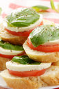 Caprese sandwiches with mozzarella of tomato and basil closeup Royalty Free Stock Photography