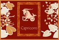 Capricorn zodiac sign Stock Images