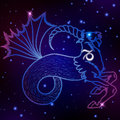 Capricorn zodiac sign, horoscope symbol, vector illustration Royalty Free Stock Photo