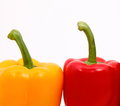 Capsicum capsicums on the white background Stock Photos