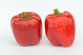 Capsicum red pepper isolated on the white background Stock Image