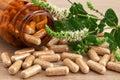 Capsules of natural medicine Royalty Free Stock Photo