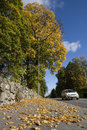 Car in Autumn Royalty Free Stock Photography