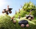 Car crash at ants races, ant tales Royalty Free Stock Photo