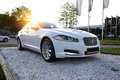 Car on sunset background view of a modern jaguar xf Royalty Free Stock Photography