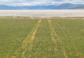 Car tracks on a grass field leading to a white beach in the isle of harris scotland Royalty Free Stock Photos