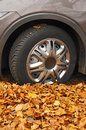 Car wheel in autumn leaves Stock Image