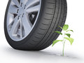 Car wheel next to a small green Royalty Free Stock Photos
