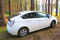 Car in the wood white modern outdoors Royalty Free Stock Image