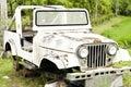 Car Wreckage Royalty Free Stock Photo