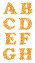 Caracteres capitales hechos de las semillas del maíz Foto de archivo libre de regalías
