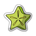 Carambola fresh fruit drawing icon