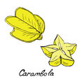 Carambola and sliced piece