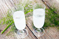 Caraway brandy in glasses and fresh fennel green Stock Images