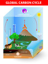 Carbon cycle. Vector diagram Royalty Free Stock Photo