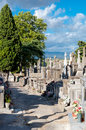 Carcassone graveyard walking paths in france Royalty Free Stock Image