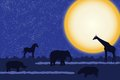 Card with african animals at night silhouettes over moon Royalty Free Stock Image