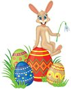 Card with bunny and easter eggs Royalty Free Stock Photo